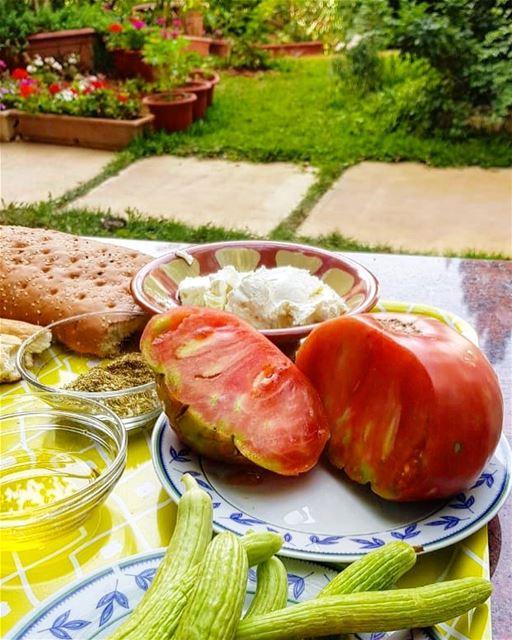 The Traditional Lebanese breakfast.... zahle zahleh lebanon zaatar... (Zahlé, Lebanon)