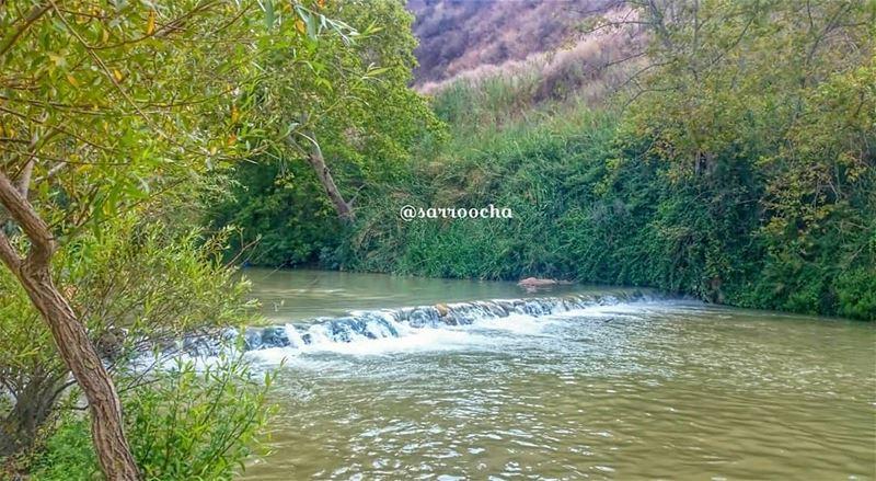 سحر الطبيعة في جنوب لبنان 🏞 takenbyme ptk_Lebanon visitlebanon ... (في قعقعية الجسر)