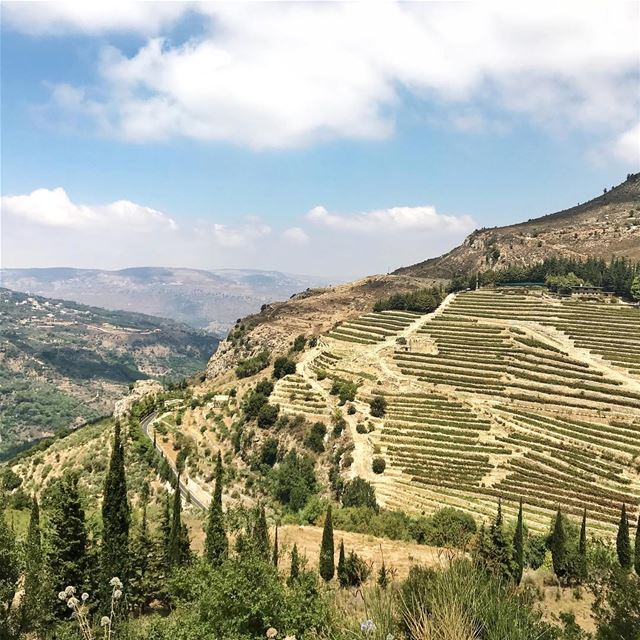 •لبنان الأخضر••• Lebanon لبنان landscape green exklusive_shot ... (Jezzîne, Al Janub, Lebanon)