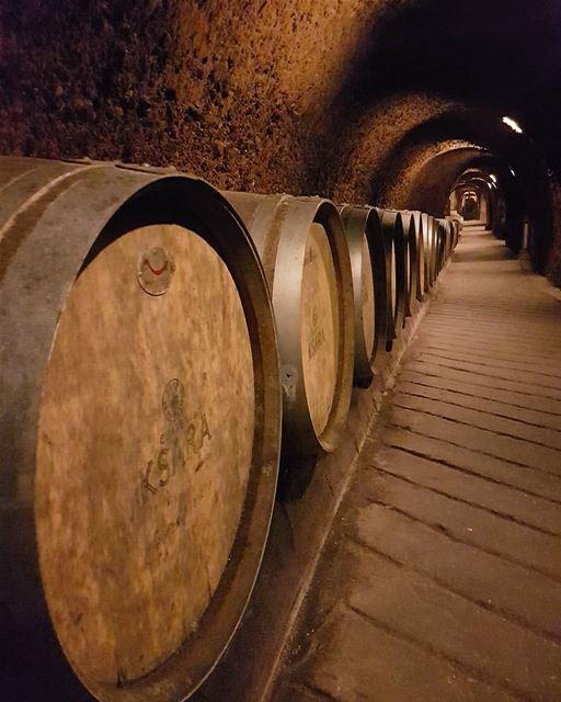Cave de ksara.... ksara cave zahle zahleh lebanon chateau wine barrel... (Zahlé, Lebanon)