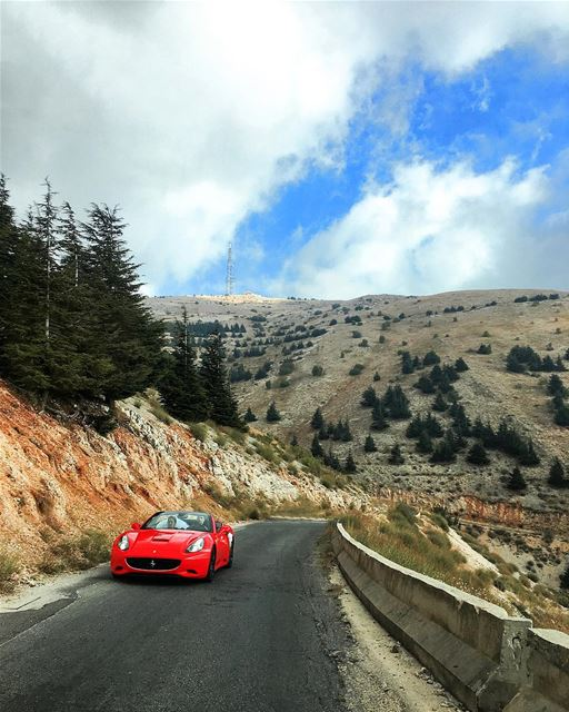 • Road to Paradise • ♥️ ferrari car wedding moment cedar road ... (Al Shouf Cedar Nature Reserve)