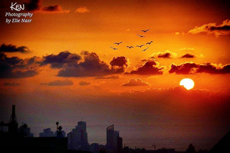 ...عم بحلم برفيقة تقلّي مشي نطلع صوب الشمساخدها ونطير نعلي مطرح لا جن و (Fanar, Mont-Liban, Lebanon)