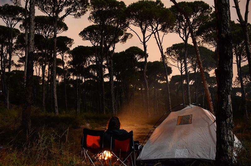 Cold Air 💨Dark Night 🌙Warm Fire 🔥Bright Stars ⭐️ camping travel ... (Bkâssîne, Al Janub, Lebanon)