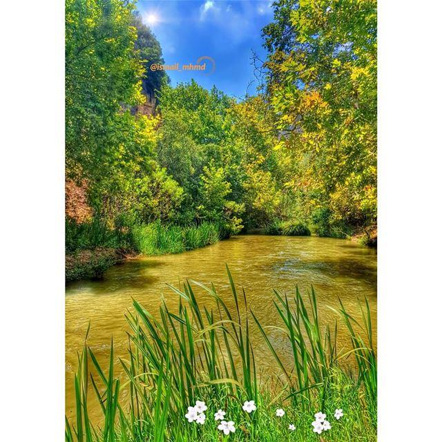 ~~☆☆ 📸1808051357 ☆☆~~ (Litani River)