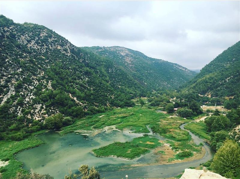 Never had enough of discovering this tiny but beautiful country 🇱🇧! Here... (3youn el Samak)