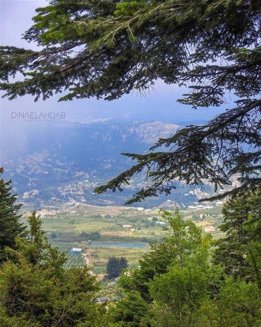 🌲_____________ lebanon lebanon_hdr travel travelblogger travelholic... (Akkar)
