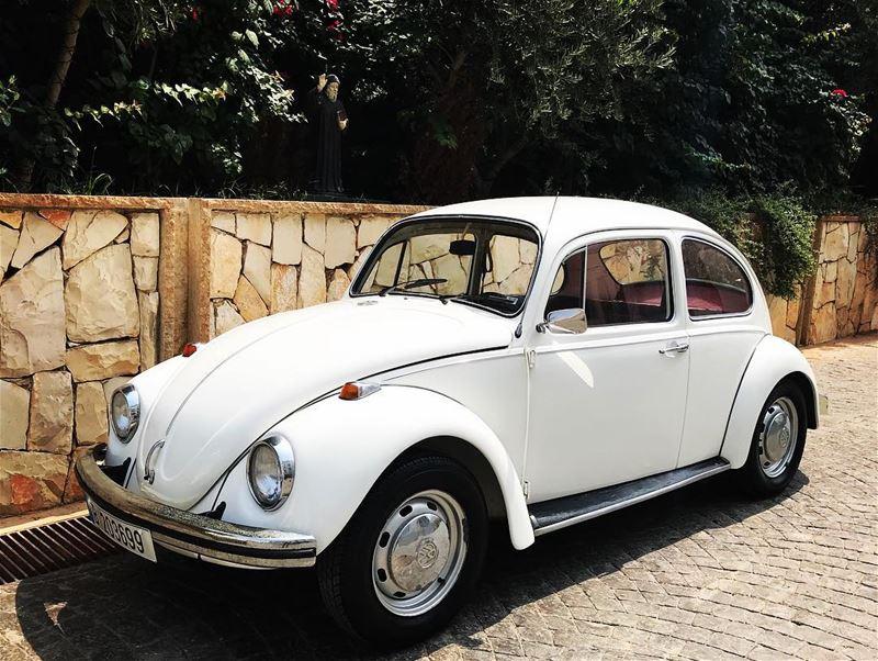 volkswagen volkswagenbeetle beetle vw vwbeetle lebanon car cars white... (Baabda)