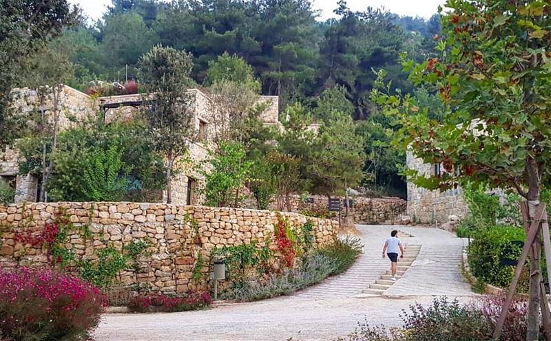 Temsheye 😋💚 ........... Lebanon bkerzay chouf ... (Bkerzay)