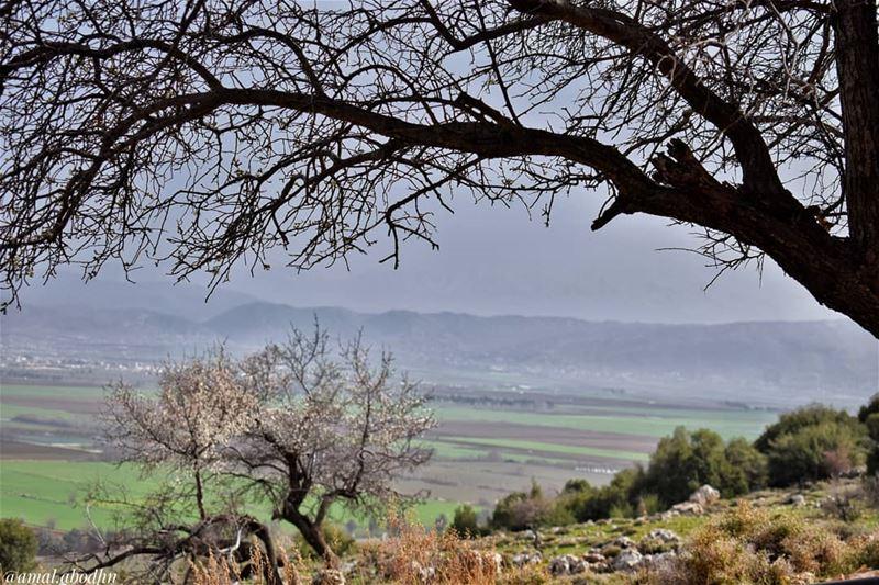 ليست الحياة بـسطوحها بل بخفاياها، ولا الناس بوجوههم بل بقلوبهم.......... (Beqaa Valley)