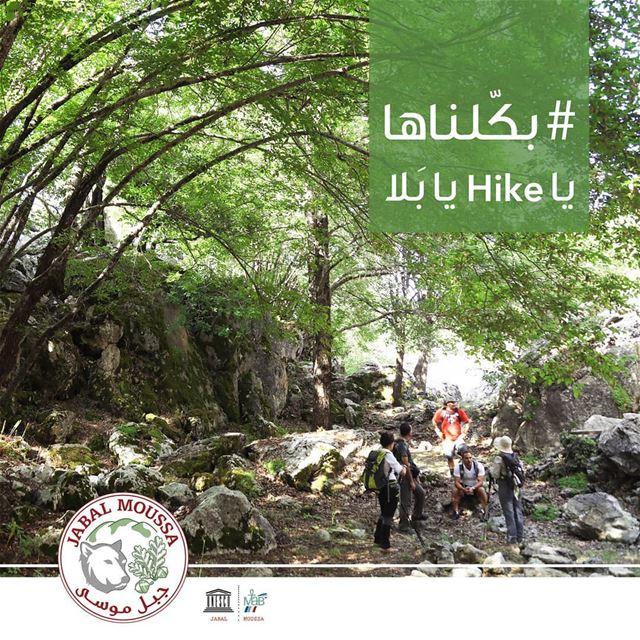 I WALKED THE LOOP. . JabalMoussa unescomab unesco biospherereserve ... (Jabal Moussa Biosphere Reserve)