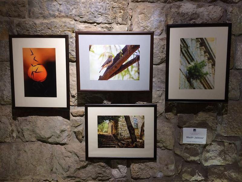 🔹my participation in ehden photography exhibition. مشاركتي في معرض اهدن ال