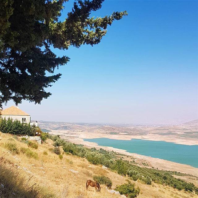 Bonjour ig_respect ig_lebanon instaamici ptk_nature ptk_lebanon ... (Qaraaoun, Béqaa, Lebanon)