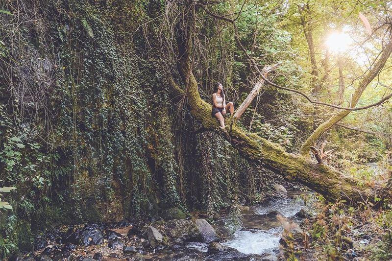 Down by the river🍃 livelovebeirut livelovelebanon explore ... (Kadisha Valley)