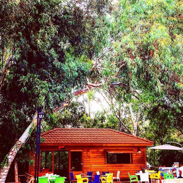 bnechaaï northoflebanon liveloveehden livelovezgharta livelovelebanon... (Bnechaaï, Liban-Nord, Lebanon)