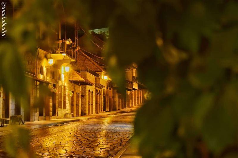تكتسب الأماكن فجأة معنى جديداً حين تتعرف على حكايتها.. راشيا ....... (قلعة الإستقلال راشيا الوادي)