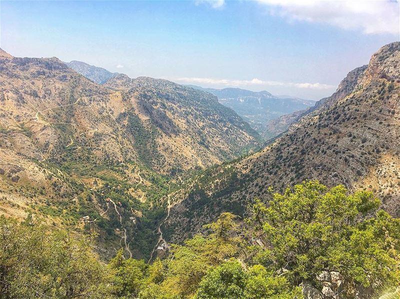 The poetry of earth is never dead. super_lebanon livelovebeirut ... (Arz Tannoûrîne)