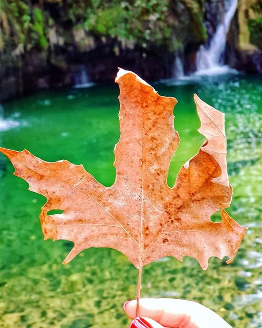 This  autumn feeling 🍁 septembervibes........ livelovechouf... (Baakline, Mont-Liban, Lebanon)
