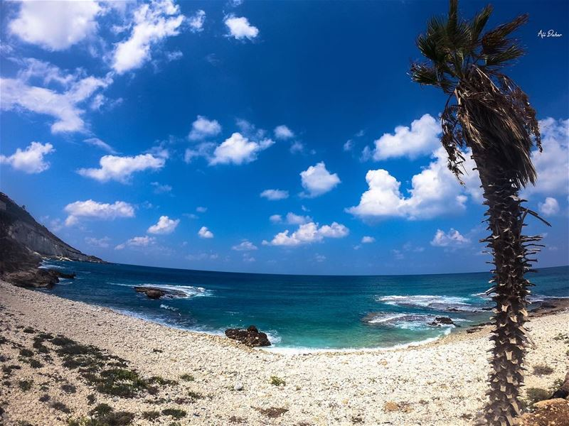 🌊🌴.... beach summertimefun sundayfunday nakoura clearwaterbeach... (Naqoura)