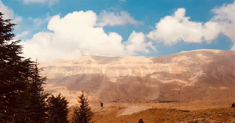 And forget not that the earth delights to feel your bare feet and the... (Hadchît, Liban-Nord, Lebanon)