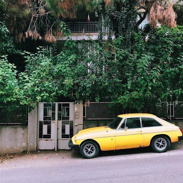 •Yellow••• Lebanon car yellowcar exklusive_shot liveauthentic ... (Baouchrîye, Mont-Liban, Lebanon)