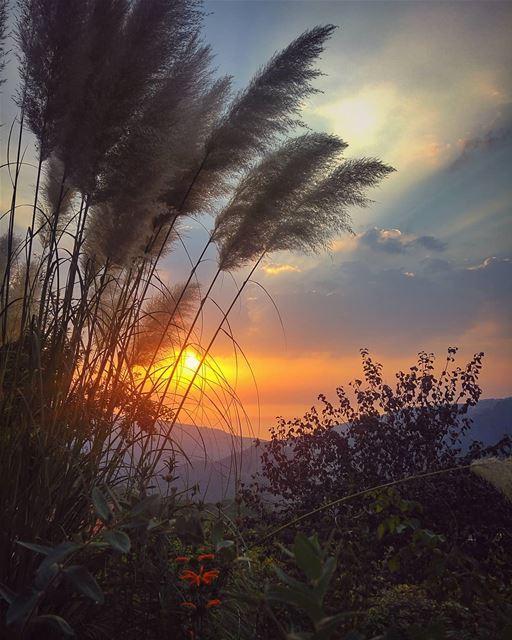 😍 beautifuldestinations livelovebeirut livelovebatroun whatsuplebanon... (Bmariam, Mont-Liban, Lebanon)