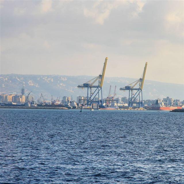 Les giraffes du port............. Tripoli Lebanon port ... (Port of Tripoli)