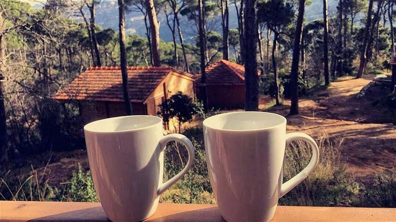 A perfect Sunday morning ☕🏡 Have a great day everyone! ☉❤...