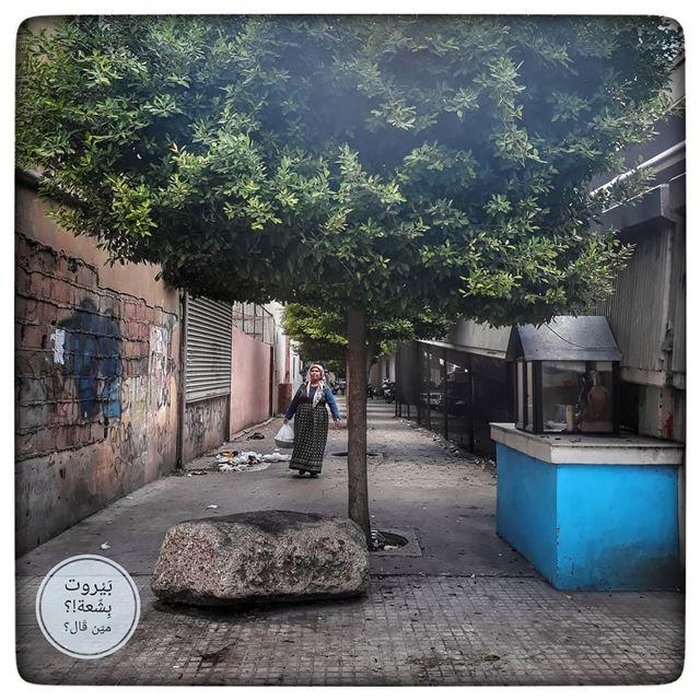 🇱🇧 .إني قرفتك ناهدًا متدليا ** وقرفتُ تلك الحلمة المتهرِّئةْأنا لا تحرك (Borj Hammoud, Mont-Liban, Lebanon)