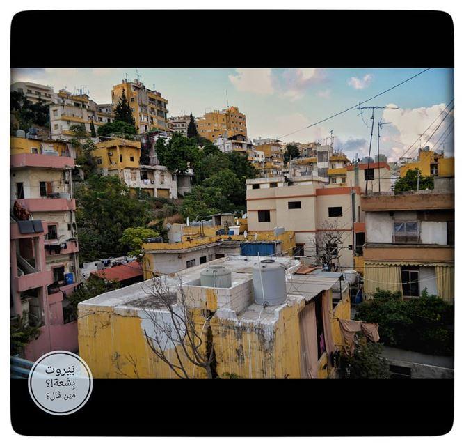 🇱🇧 .كرم الزيتون - لبنان..______________________________Painting... (Achrafieh, Lebanon)