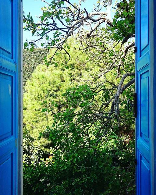lebanon🇱🇧 lebanoninapicture livelovelebanon lebanesephotographer ...