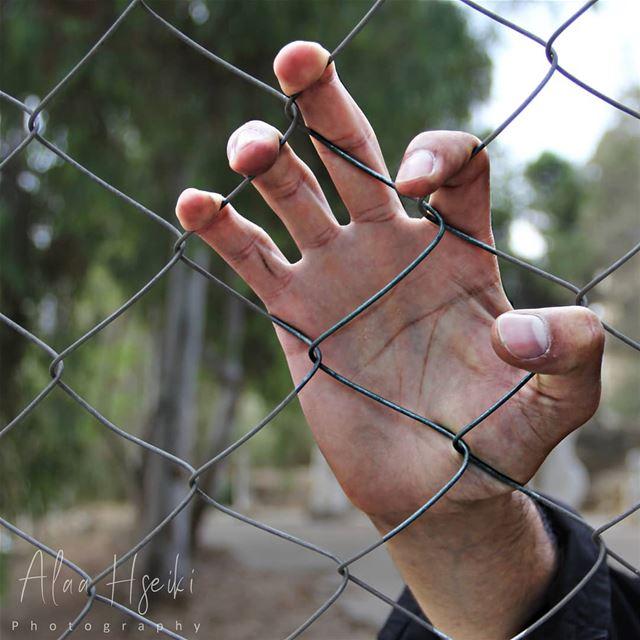"""كتب سجين على حائط زنزانته:""""أخيراً عاقبتُ العالم وسجنتهُ خارج زنزانتي""""...."""