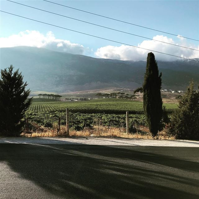 goodmorning  happyweek  happymonday  enjoyyourday  beautifulview ... (West Bekaa)
