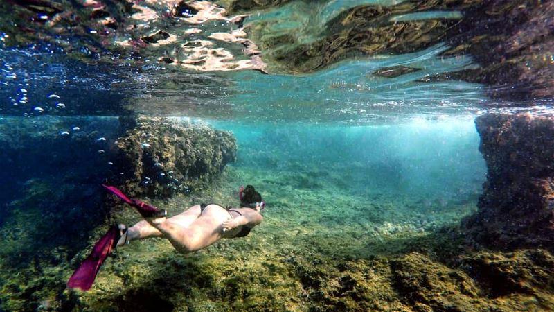Underwater Ramkin Island Tripoli Lebanon 💙🇱🇧 livelovelebanon ... (Ramkîne)