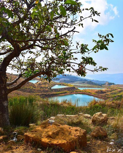 الهروب حلٌ اوحد... كلما كثرت الضغوطات، الاحزان، الافكار...لا نجد الا الهرب (Falougha, Mont-Liban, Lebanon)