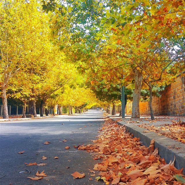 🍁 beautifuldestinations livelovebeirut livelovesawfar whatsuplebanon ... (Sawfar, Mont-Liban, Lebanon)