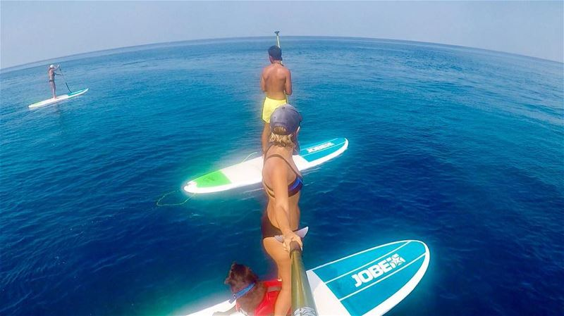 Enjoy the outdoors this weekend people!! 🐬... ocean sea gopro sup ...