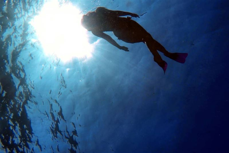 If i could live here... sunrays oceanlife dive freedive ...
