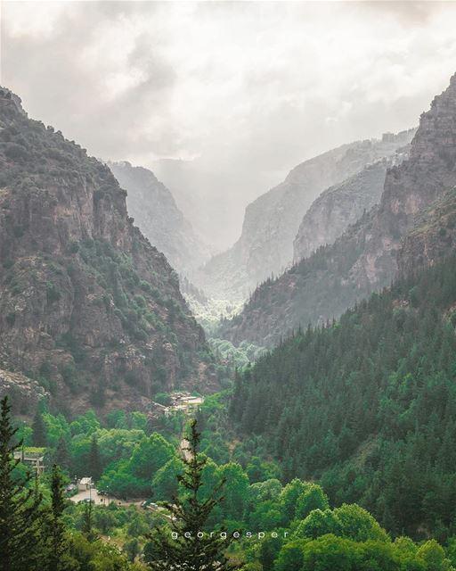 Wadi Kadisha • UNESCO World Heritage Site since 1998 • 🇱🇧..... ... (Kadisha Valley)