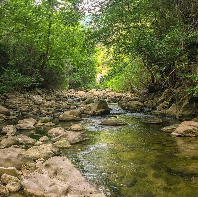 Upstream we go..... natgeoshot natgeotravelpic liveoutside ... (Lebanon)