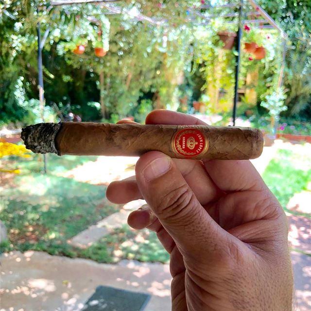 Juan Lopez N1.... zahle morning lebanon vacation garden cigar cigars... (Zahlé, Lebanon)