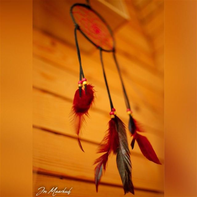Come, get entwined in the dream catcher of my heart... @haventhecabin ...