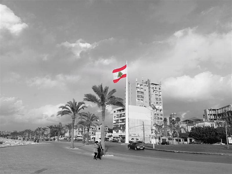 tyrecity 🇱🇧🇱🇧 Photo by @hussein.fwz 📷 frEDITS artgaleri , ... (Tyre, Lebanon)