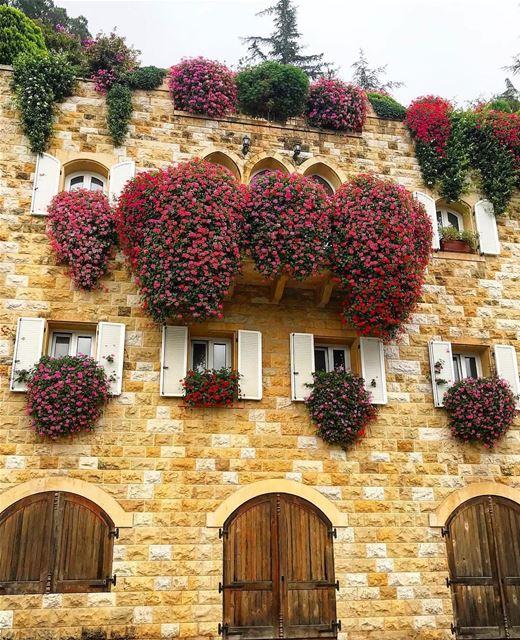 Algumas fotos de ruas de Broummana, no Monte Líbano, parecem autênticas... (Broummâna, Mont-Liban, Lebanon)