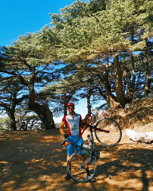 🚵‍♂️🚵‍♂️. cycling... (Al Shouf Cedar Nature Reserve)
