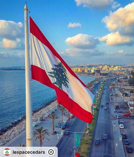 """""""Bom dia, direto da linda costa do sul do Líbano 🇱🇧 Sabah el kheir,..."""