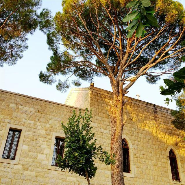 Light of Hope ✨✝️Location: دير القديس مار يوسف - جربتا... (St Rafqa-Jrebta)