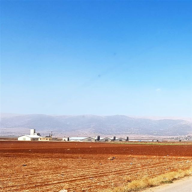 🇱🇧🇱🇧❤❤ view  farm  roadtrip  collectingmoments  amazinglebanon ... (Baalbek, Lebanon)