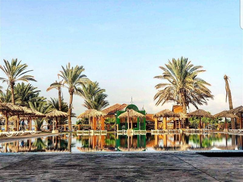 batroun البترون_سفرة @sawaryresort sawary resort batrounbeach ... (Sawary Resort & Hotel-Batroun)