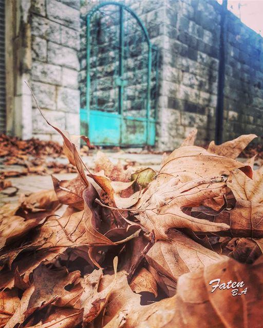 فسقط الحب كأوراق الخريف في ذلك النهار... 👉Follow and Tag👈➡@instaamici➡@ (Corniche Sawfar)