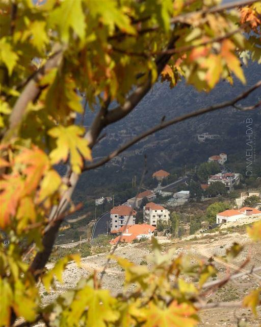 🍁🍂________________ lebanon lebanon_hdr sunlight buildings ... (Ehden, Lebanon)
